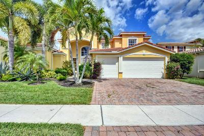 Lake Worth Single Family Home For Sale: 9855 Via Amati