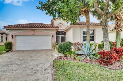 Lake Worth Single Family Home For Sale: 9438 Vercelli Street