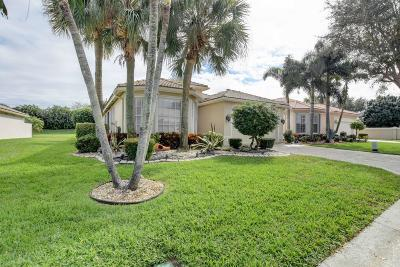 Boynton Beach Single Family Home For Sale: 6519 Malta Drive