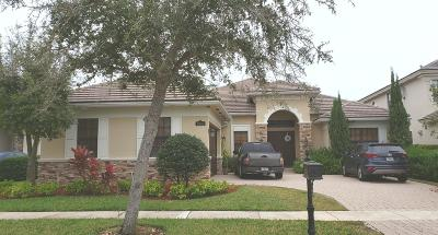 Boynton Beach Single Family Home For Auction: 9343 Equus Circle