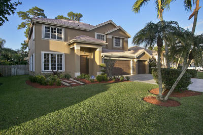 boynton beach Single Family Home For Sale: 9080 Picot Court