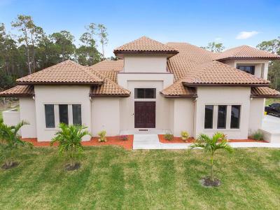 Loxahatchee Single Family Home For Sale: 16182 Hamlin Boulevard
