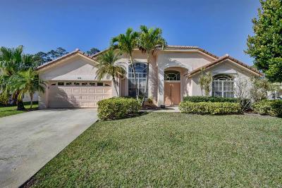 Single Family Home For Sale: 219 Button Bush Lane