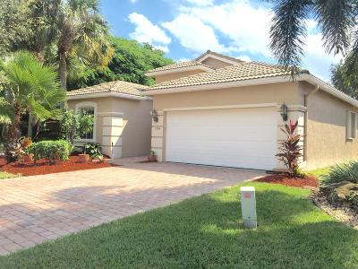 Lake Worth Single Family Home For Sale: 6504 Pisano Drive