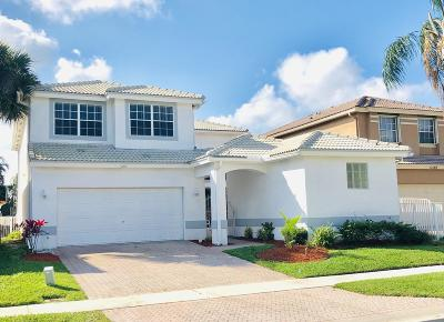 Boca Raton Single Family Home For Sale: 11193 Harbour Springs Circle
