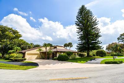 Palm Beach Gardens Single Family Home For Sale: 13785 Sand Crane Drive