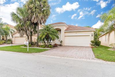 Lake Worth Single Family Home For Sale: 7163 Via Leonardo