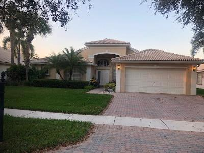 Boynton Beach Single Family Home For Sale: 7410 Lahana Circle