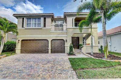 Boynton Beach Single Family Home For Sale: 9973 Cobblestone Creek Drive