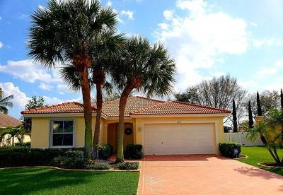 Lake Worth Single Family Home For Sale: 6478 Sand Hills Circle