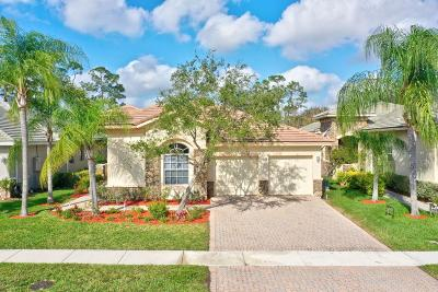 Palm Beach Gardens Single Family Home For Sale: 9469 Osprey Isles Boulevard