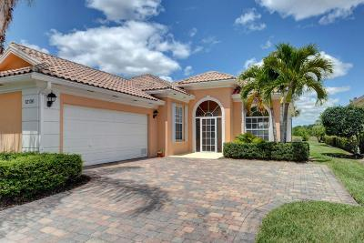 Port Saint Lucie Single Family Home For Sale: 12136 SW Keating Drive