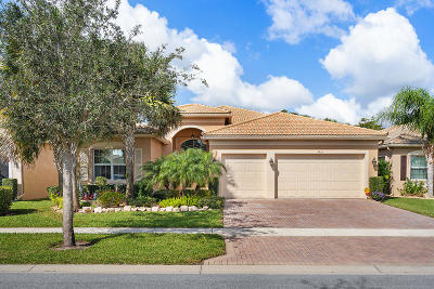 Boynton Beach Single Family Home For Sale: 9716 Dovetree Isle Drive
