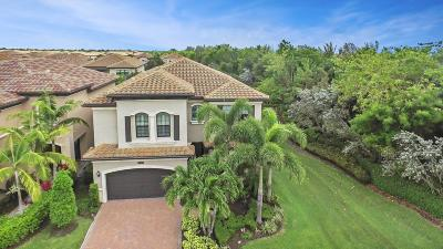 Delray Beach Single Family Home For Sale: 8147 Hutchinson Court