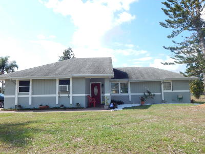 Port Saint Lucie Single Family Home For Sale: 380 NW La Playa Street