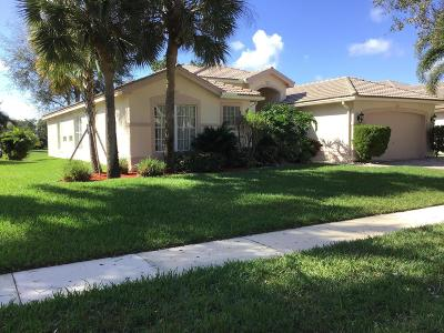 Boynton Beach Single Family Home For Sale: 11053 Malaysia Circle