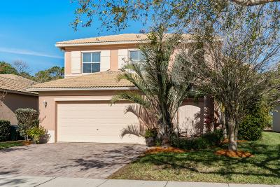 Fort Pierce Single Family Home For Sale: 5647 Sunberry Circle