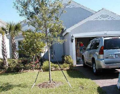 Royal Palm Beach Single Family Home For Sale: 230 Berenger