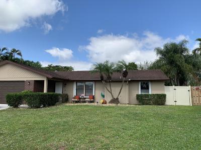 Boynton Beach Single Family Home For Sale: 8295 Mildred Drive W