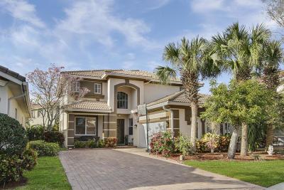 Single Family Home Contingent: 9127 Citrus Isle Lane
