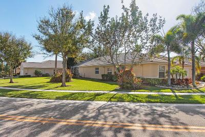Boynton Beach Single Family Home For Sale: 8199 Duomo Circle