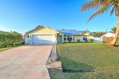 Port Saint Lucie Single Family Home For Sale: 2121 SW Janette Avenue