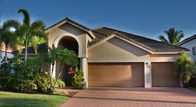 Boca Raton Single Family Home For Sale: 12353 Riverfalls Court