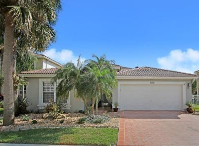 Boynton Beach Single Family Home For Sale: 3596 Hudson Lane