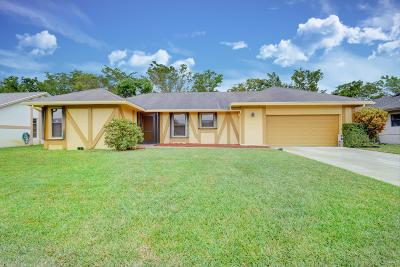 Delray Beach Single Family Home For Sale: 14747 Hideaway Lake Lane