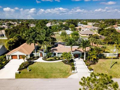 Port Saint Lucie Single Family Home For Sale: 4450 SW Tabor Street