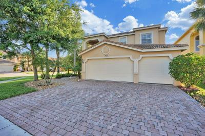 Lake Worth Single Family Home For Sale: 7330 Via Luria