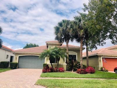Delray Beach Single Family Home For Sale: 9613 Isles Cay Drive