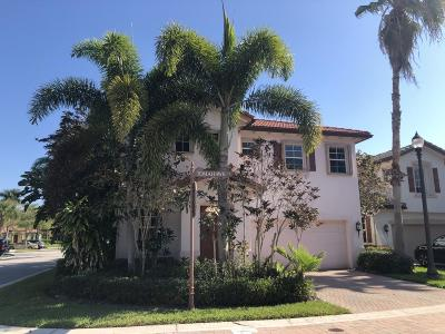 Palm Beach Gardens Single Family Home For Sale: 528 Tomahawk Court