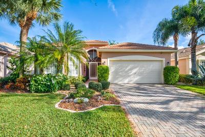 Boynton Beach Single Family Home For Sale: 7281 Kea Lani Drive