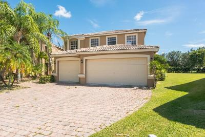 Lake Worth Single Family Home For Auction: 7393 Via Luria
