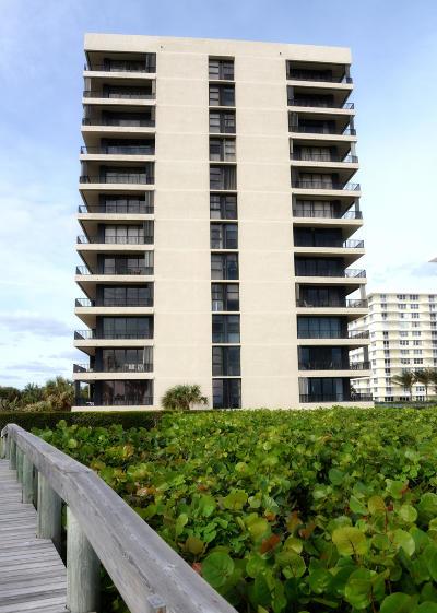 Juno Beach Rental Contingent: 450 Ocean Drive #806