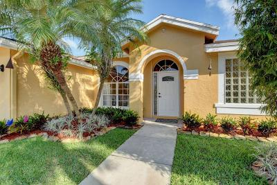 Boynton Beach Single Family Home For Sale: 6333 Terra Rosa Circle