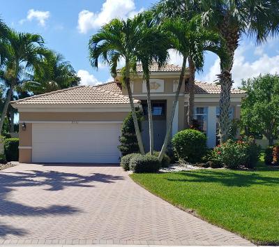 Boynton Beach Single Family Home For Sale: 6533 Southport Drive
