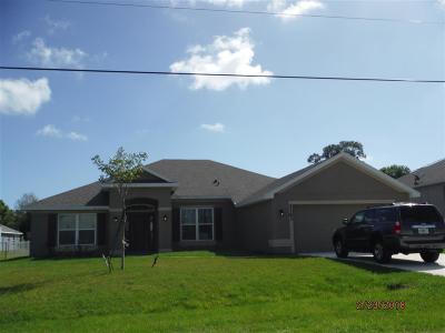 Port Saint Lucie Single Family Home For Sale: 5363 NW Nassau Lane