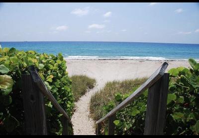 Palm Beach Rental For Rent: 2840 S Ocean Boulevard #315