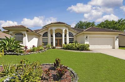 Port Saint Lucie Single Family Home For Sale: 2591 SW Calender Street