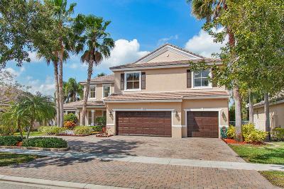 Lake Worth, Lakeworth Single Family Home For Sale: 9041 Sedgewood Drive