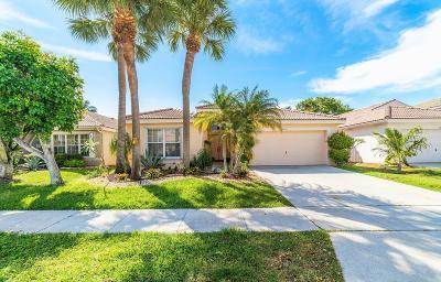 Boynton Beach Single Family Home For Sale: 8170 Mystic Harbor Circle