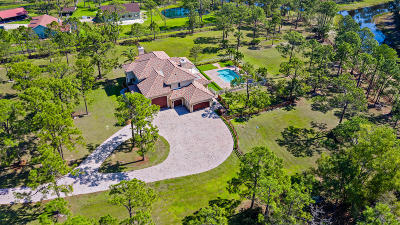 Palm Beach Gardens Single Family Home For Sale: 13956 Coco Plum Road