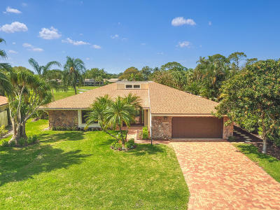 Palm Beach Gardens Single Family Home For Sale: 13796 Sand Crane Drive