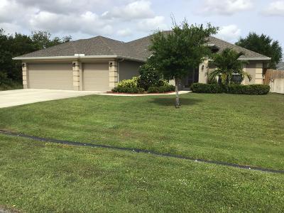 Port Saint Lucie Single Family Home For Sale: 3751 SW Lafleur Street