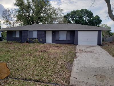 Port Saint Lucie Single Family Home For Sale: 1117 SE Stewart Road