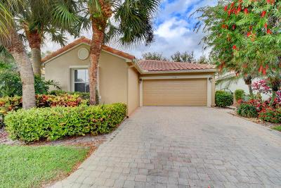 Boynton Beach Single Family Home For Sale: 7125 Whitfield Avenue
