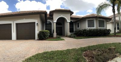 Pembroke Pines Single Family Home For Sale: 17474 SW 12th Street