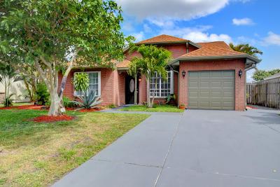 Boynton Beach Single Family Home For Sale: 5610 Pebble Brook Lane